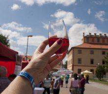 Vše o In vino Hostivice 2017