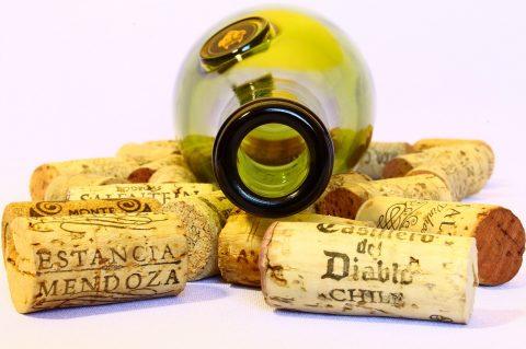 Hlasujte o Vinaře In vino Hostivice 2018